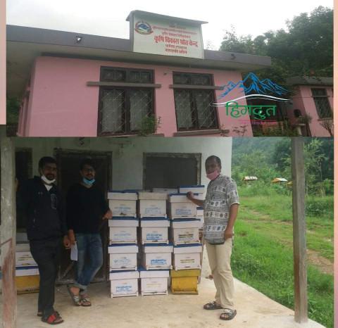 कृषी विकास श्रोत केन्द्र वालिङ शाखा द्वारा कृषकलाई ५० प्रतिशत अनुदानमा मौरी सहितको घार वितरण